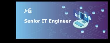 Senior IT Engineer