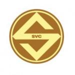 Công Ty Cổ Phần Sóng Việt Logo